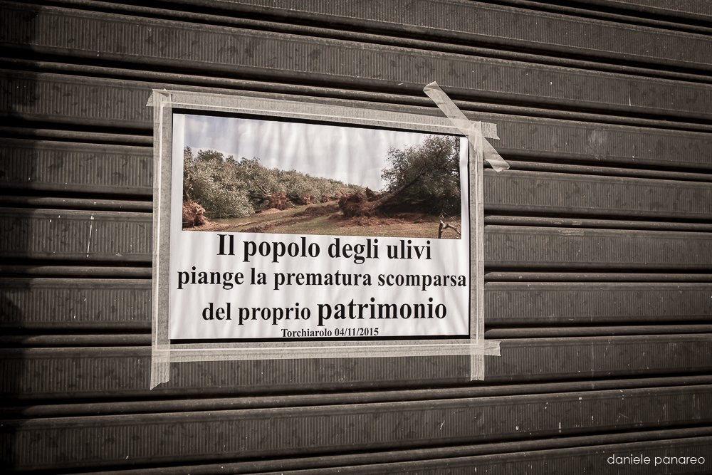 Project Potenza - Daniele Panareo Fotografo Matrimonio Lecce-1