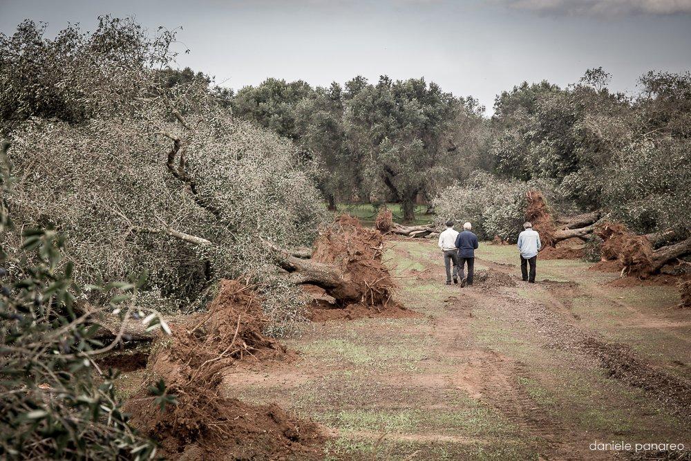 Project Potenza - Daniele Panareo Fotografo Matrimonio Lecce-5